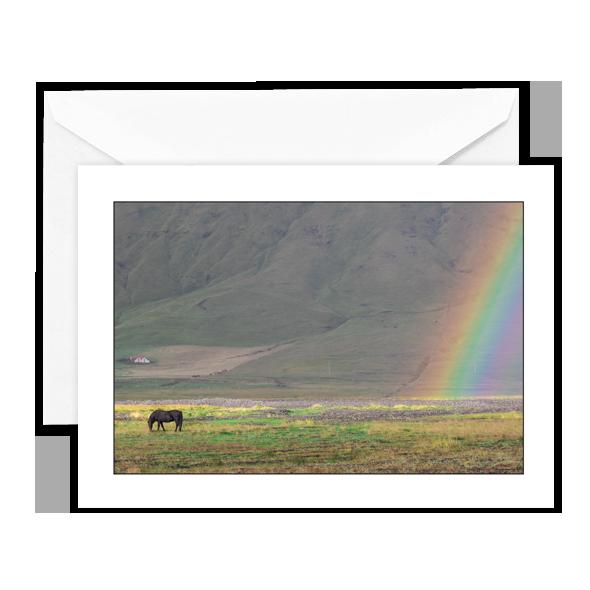 horse-rainbow