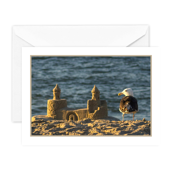 Look, if a seagull can build a sandcastle, you can do anything!